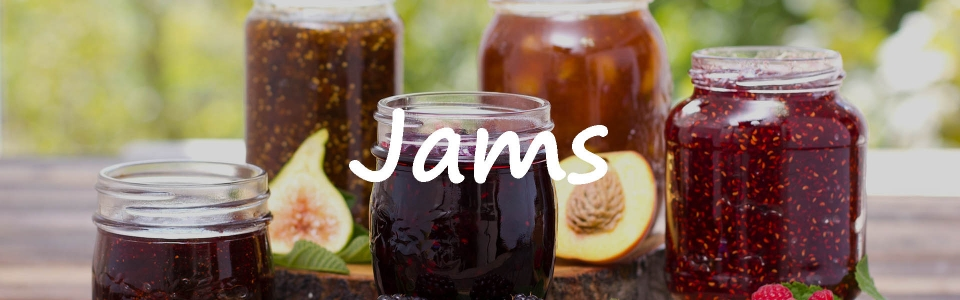 web-ready-jams-1
